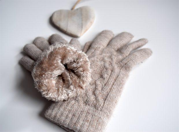 fevrier-gant-2